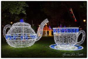 luci-dartista-2015-16