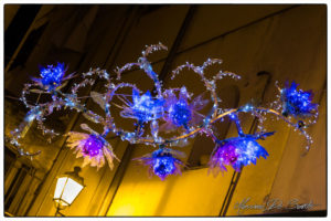 luci-dartista-2015-42