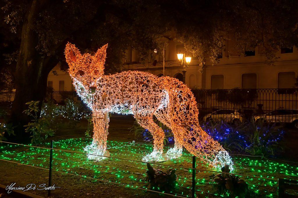 Luminaria Volpe Villa Comunale di Salerno